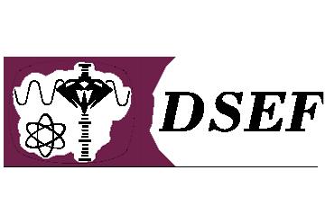 Deutsche Stiftung Edelsteinforschung (DSEF)